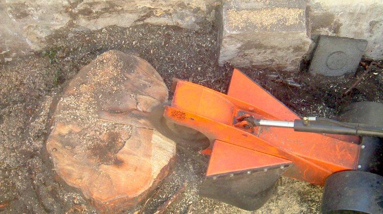 Boomverzorging Hasenaar - Verwijderen boomstobben 2.3 - Stobbenfrezen 2